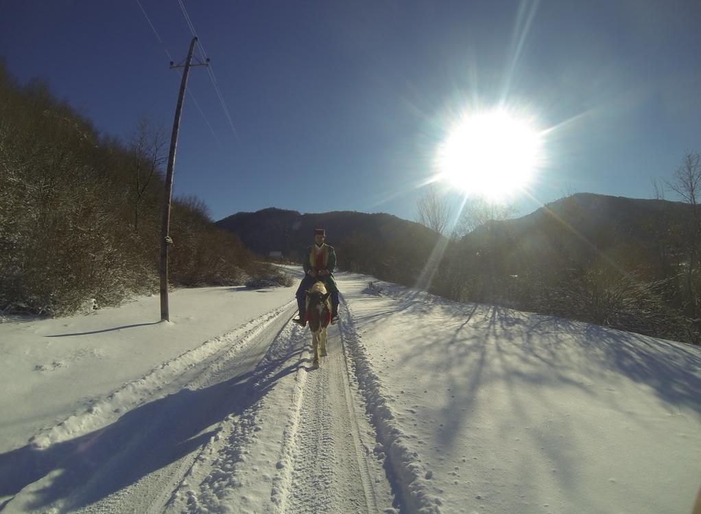 winter-horseback-riding